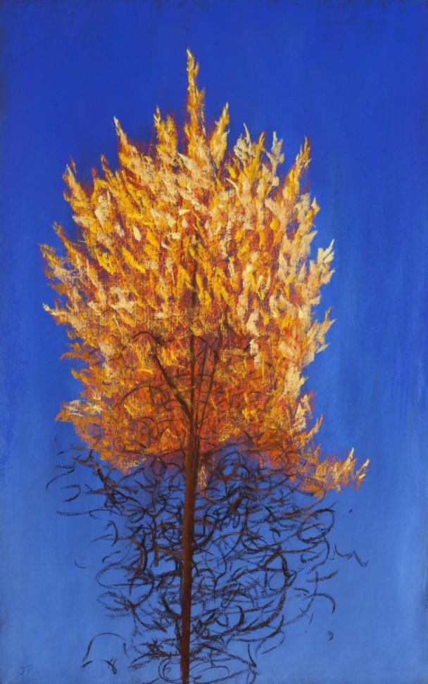 The Burning Bush (Autumn Larch)