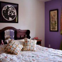 Accent walls, living room, master bedroom, guest room and kitchen walls