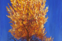 The Burning Bush (Autumn Larch)